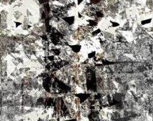 image008 (1)
